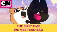 The First Time We Meet Bao Bao - Mao Mao - Cartoon Network