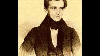 Radetzky March - Marcha Radetzky, opus 228 (Johann Strauss I)