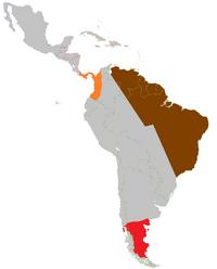 Latin America-Turn 3