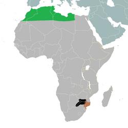 TV-A S.E. Africa
