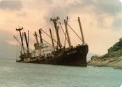 Skyluck 1979 - shun trieu