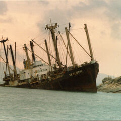 A cargo ship that was sunk in a major 985 storm near the south eastern fishing port of Antrim.