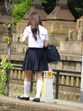Schoolgirl of Osaka 2013 (8902091035)