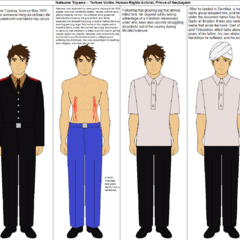 A biographic chart of Natsume Toyama prior to reunion with his younger brother.