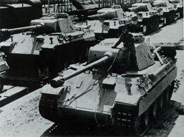 Panthers D
