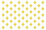 Bandera del Imperio Borbón (Dinastías)
