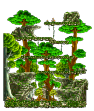 Monkey Forest III