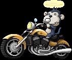 Biker Monkey