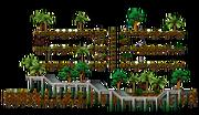 Brilliant Swamp