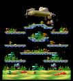 Map Mushroom Coral Hill