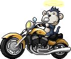 Mob Biker Monkey
