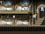 Nautilus Bunkroom