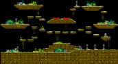 Map Mushroom Forest