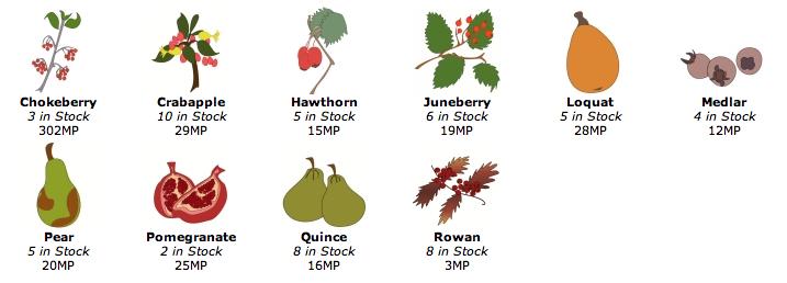 FruitShopItems