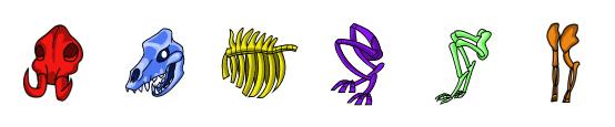 File:ColorBones.png