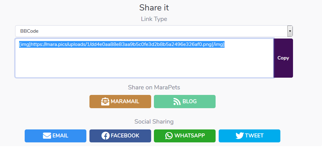 Marapics share