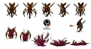 Marathon Wasp