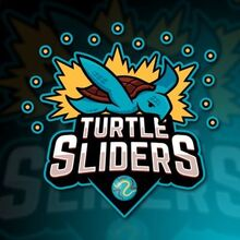 Turtle Sliders Logo