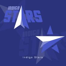 Indigo Stars Logo