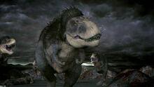 MotD Albertosaurus
