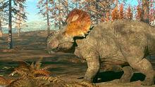 MotD Pachyrhinosaurus