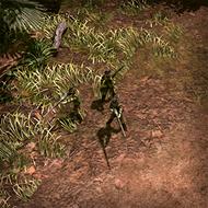 CAR Hunter 3DPortrait Base