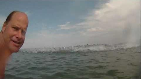 Amazing jumping fish caught with a GoPro video camera! Hundreds of them! Up close!