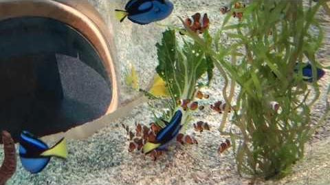 Ripley's Aquarium of the Smokies - Gatlinburg TN