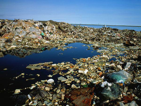 File:Alaska-garbage-dump-natgeo.jpg