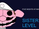 Five night at Mario s´Sister level.