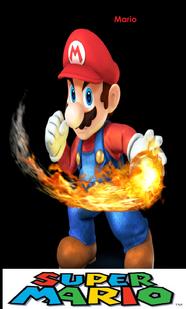 Mario SSBDS