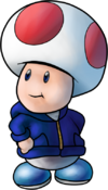 Toad PDSS