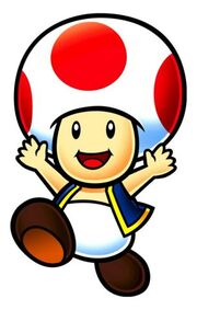 Toad SNW