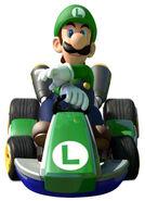 N&SRacing - Luigi Artwork