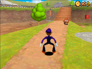 Super Waluigi 64 DS