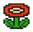 Flor de fuego4