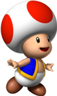 Toad ssa
