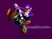 Smashbrosfan250