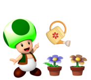Toad del Bosque con plantas