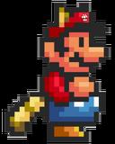 Mario Super Tanooki