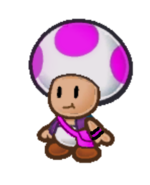 Toadcy