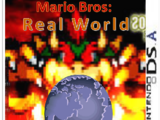 Mario Bros: Real World