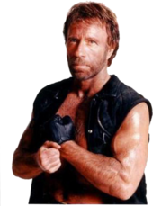 Chuck Norris SSBP