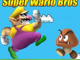 Las Wa-aventuras/Super Wario Bros