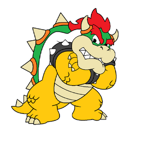 Bowser atwooork