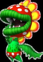 3. Floro Piraña