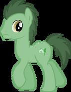 Soy un Pony!