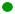 Boton verde copa fanon