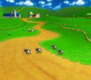 Kuhmuh-Weide