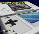 Nintendo DS (Kampfkurs)